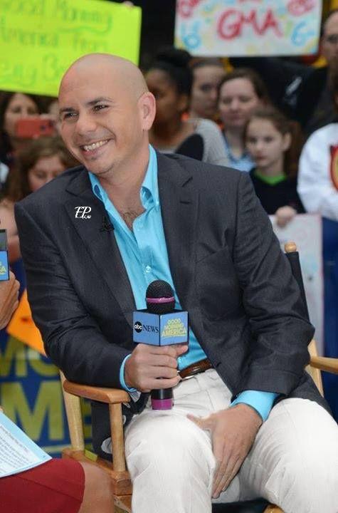 Pitbull și stilul său 2