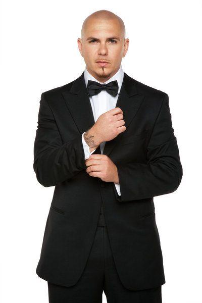 Pitbull și stilul său 3