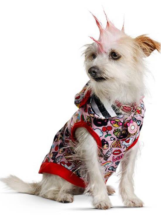 Gwen Stefani a lansat haine pentru animale de companie 0