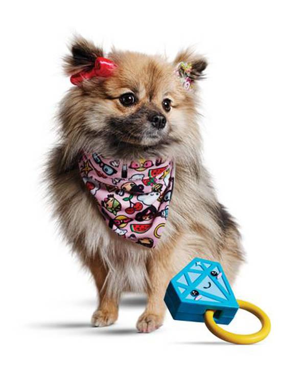 Gwen Stefani a lansat haine pentru animale de companie 1