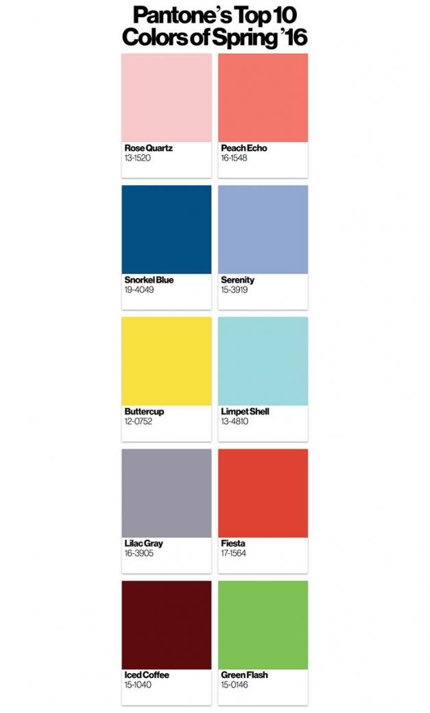Panetone top culori 2016